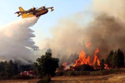 Portugal: Polémica campaña contra el fuego que repartió kits hechos con material inflamable