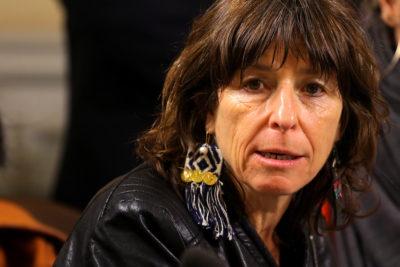 """Fech condena agresión a hijo de diputada Girardi y dice que presencia de FF.EE. """"propicia la violencia"""""""