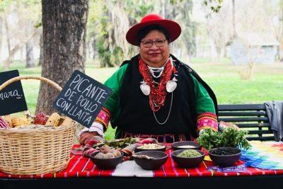 Almuerzos Junaeb incluirán recetas aymara, rapa nui y mapuche