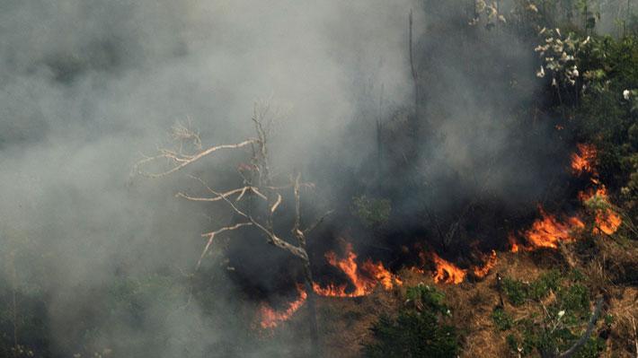 Gobernadores de la Amazonía piden a Bolsonaro aceptar ayuda internacional