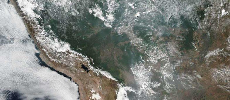 Todo lo que se sabe de los incendios que consumen la Amazonía