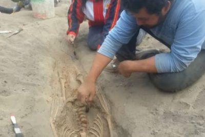 Macabro hallazgo en Perú: Encuentran restos de 227 niños sacrificados en ritual