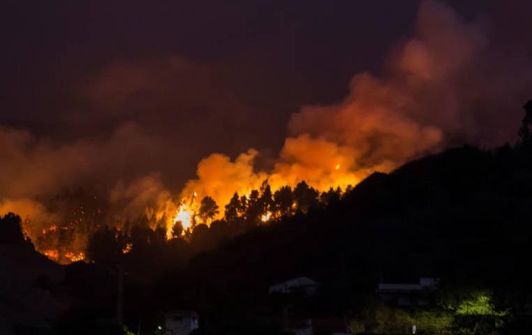 """""""Incontrolable incendio forestal en Gran Canaria: 9.000 personas evacuadas y 6.000 hectáreas devoradas"""""""