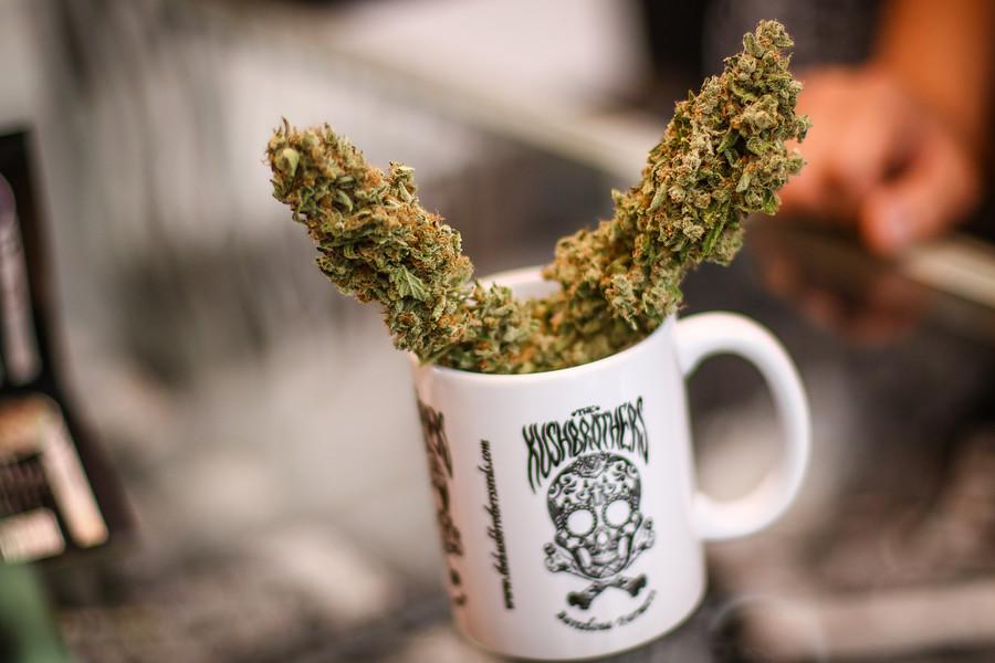 """Joven intoxicado con aceite de cannabis: """"Tuve compromiso de conciencia"""""""