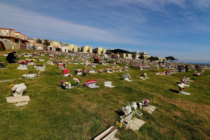 Detectan riego con agua de tumbas en cementerio Nº 3 de Playa Ancha