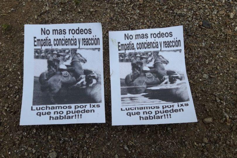 Animalistas destruyen medialuna de Curacaví por protestas contra el rodeo