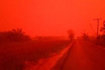 El cielo de Indonesia se tiñó de rojo producto de los incendios forestales
