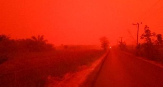 El cielo de Indonesia se tiñe de rojo producto de los incendios forestales
