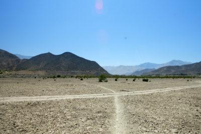 """Alcalde de Vicuña por sequía: """"Se le pone el certificado de defunción al valle"""""""
