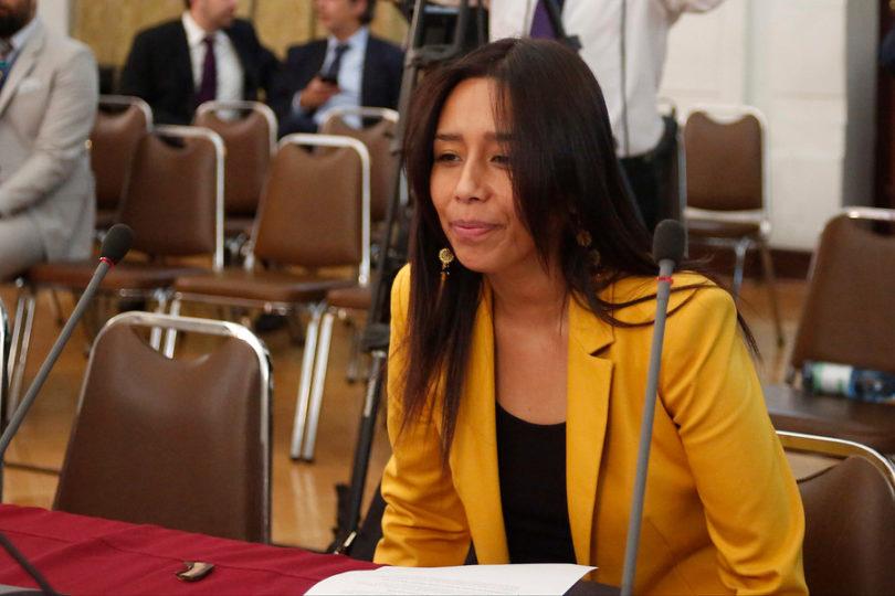 Diputada Lauquén pidió disculpas por altercado en bar capitalino