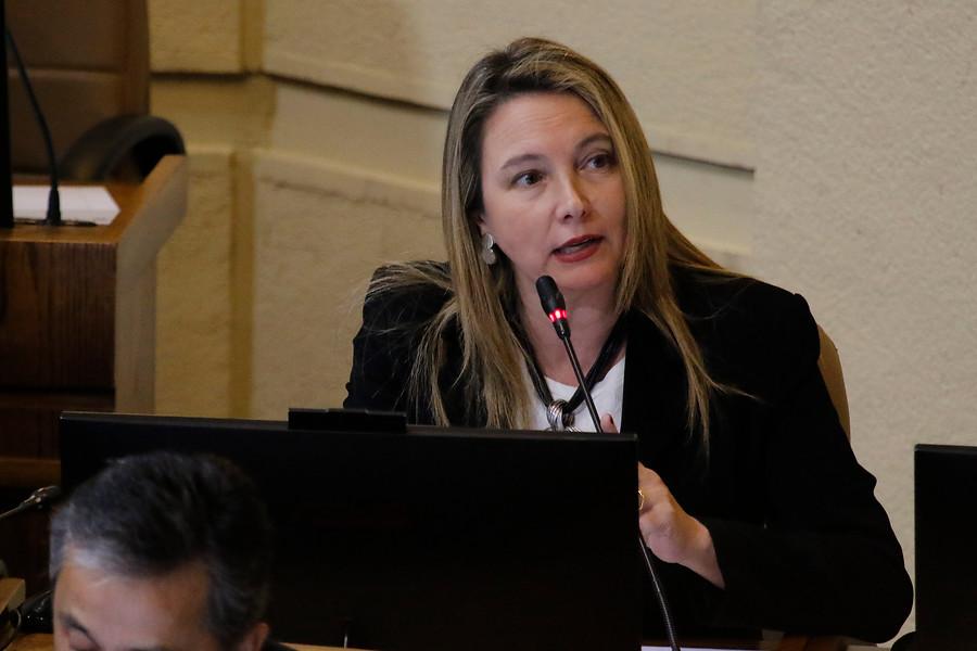 """""""Diputada Catalina del Real: al ex ministro Chadwick"""