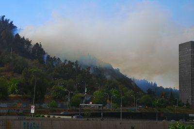 Alerta Roja en Providencia tras incendio en el cerro San Cristóbal