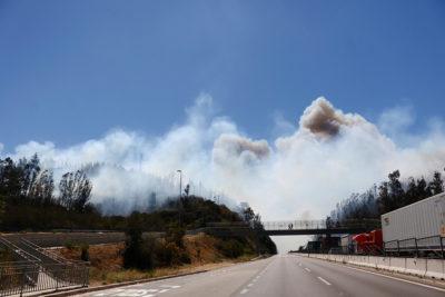Suspenden tránsito en ruta 68 por incendio forestal en Valparaíso