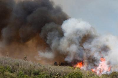 Onemi: alerta roja y cinco incendios se mantienen activos en Valparaíso