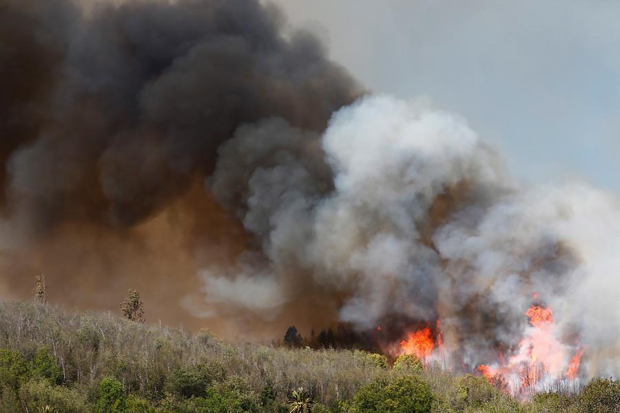 """""""Onemi: alerta roja y cinco incendios se mantienen activos en Valparaíso"""""""