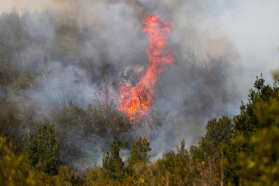 Alerta Roja por incendio forestal en la comuna de Valparaíso