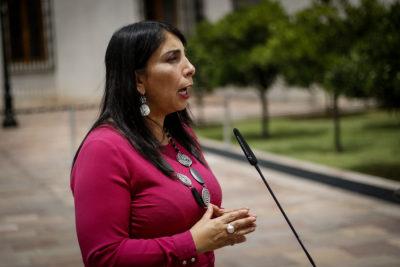 Vocera de Gobierno apunta al narcotráfico y barras bravas por hechos de violencia