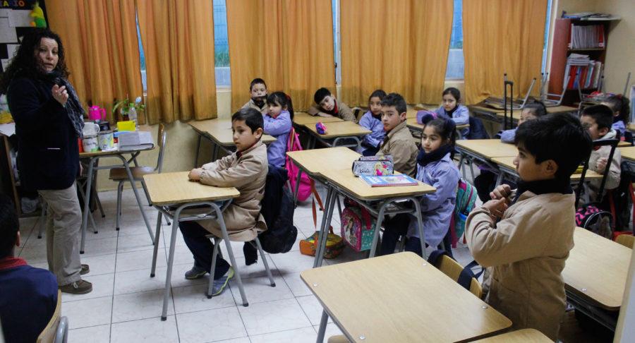 Educación Ambiental: la asignatura que podría sumarse al currículum de enseñanza básica y parvularia
