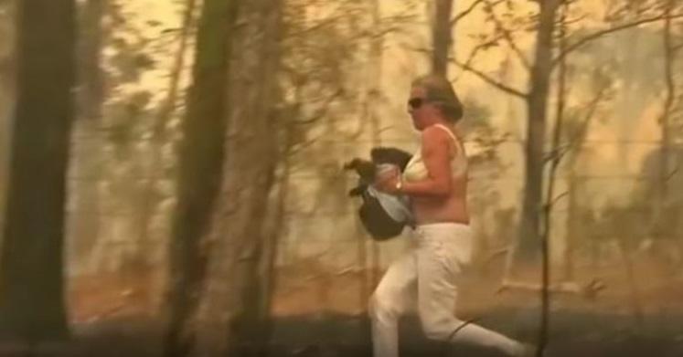 """""""VIDEO   El dramático rescate de una mujer que arriesgó su vida para salvar a un koala entre las llamas"""""""