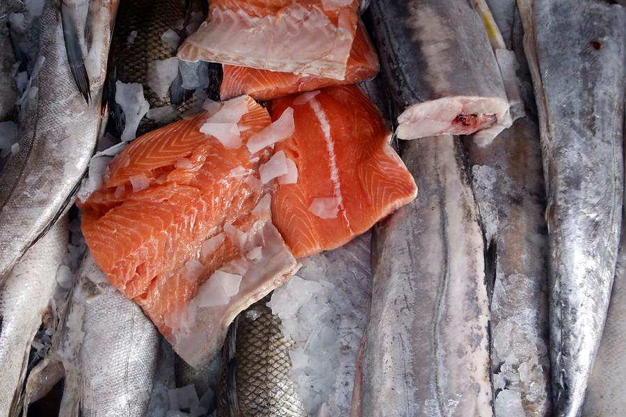 """""""Despidos y aumento en el precio: crisis social impacta a industria del salmón en Chiloé"""""""