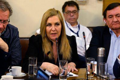 """Diputada Pamela Jiles a Boric: """"Mientes y eres una mala persona"""""""
