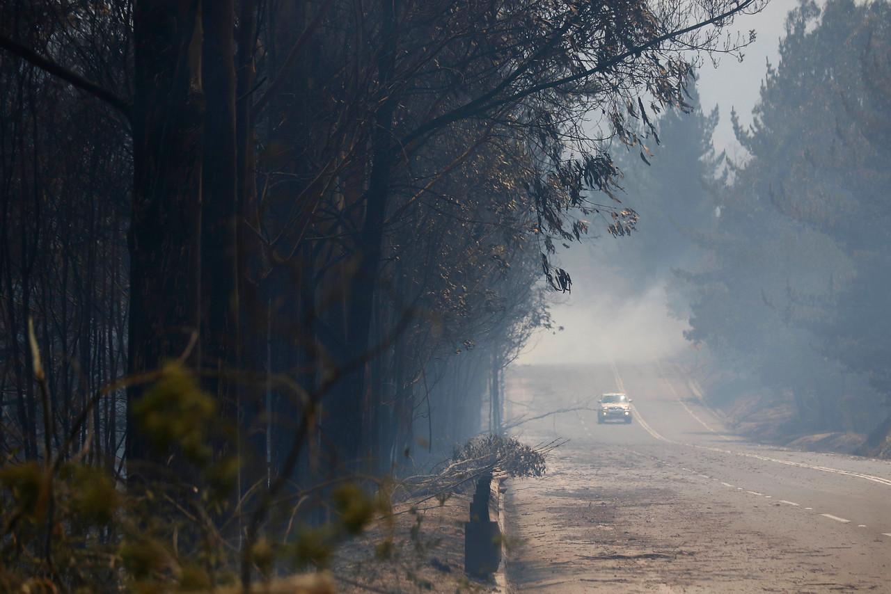 """""""ONEMI: Controlan incendio forestal que consumió 150 hectáreas en comuna de San Pedro"""""""