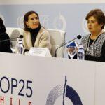 """COP25: Schmidt afirma que continúan trabajando para lograr un """"acuerdo ambicioso"""""""