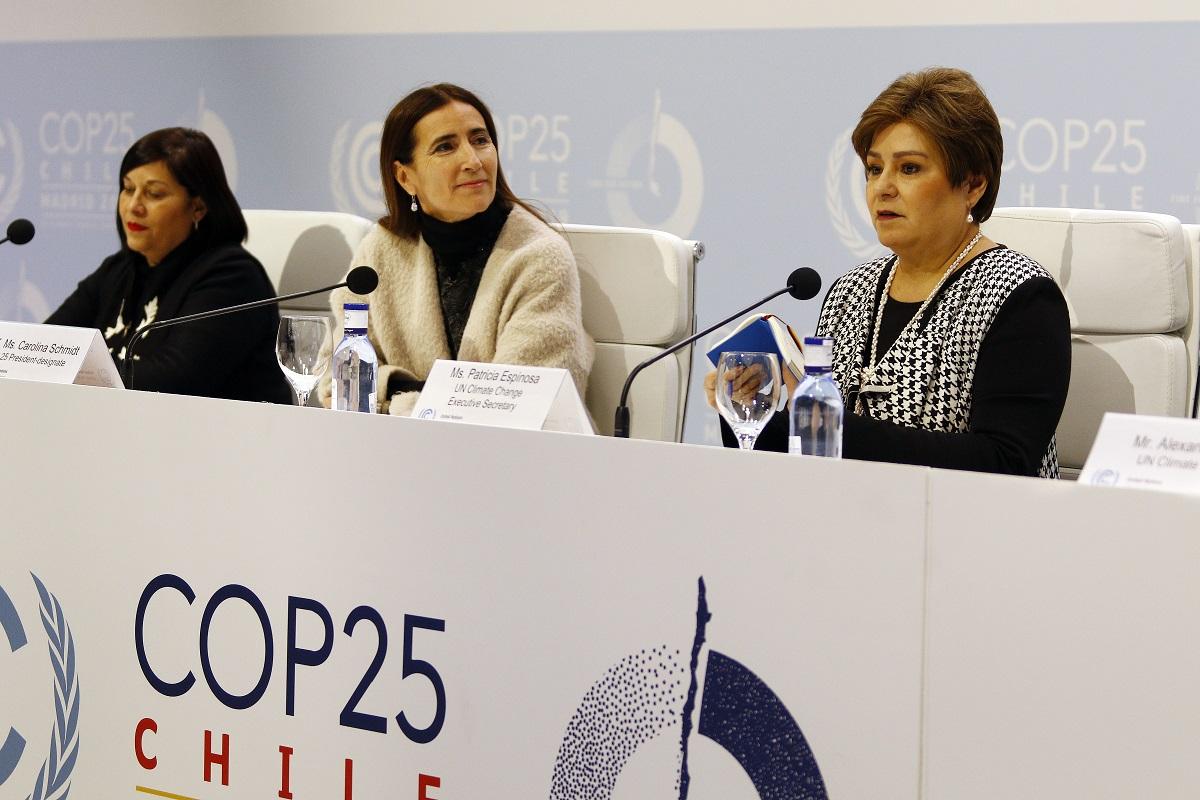 COP25: Schmidt afirma que trabajan para lograr un
