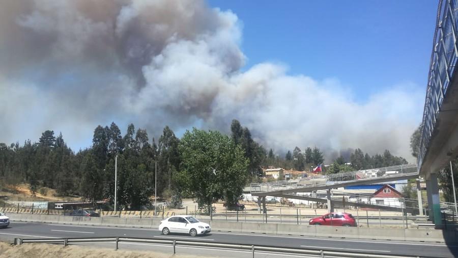 """""""Decretan Alerta Roja en Valparaíso por incendio forestal en Placilla"""""""