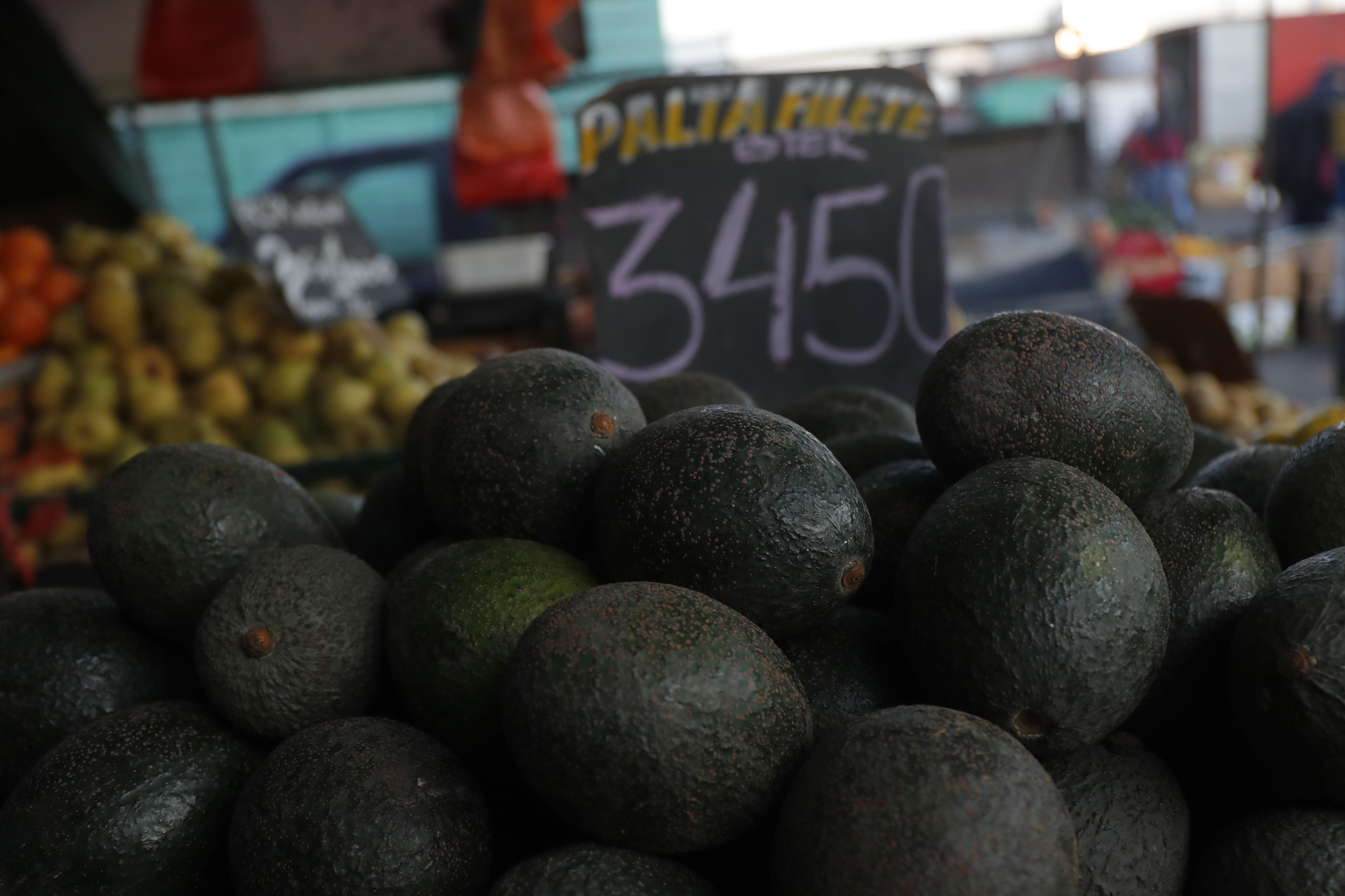 """""""Los desafíos que la COP25 oficializó en la industria gastro/alimentaria"""""""