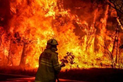 Incendios en Australia: millones donados por estrellas y críticas a las Kardashians