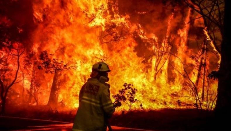 Incendios forestales en Australia: decretan emergencia y Primer ministro se disculpa por tomar vacaciones