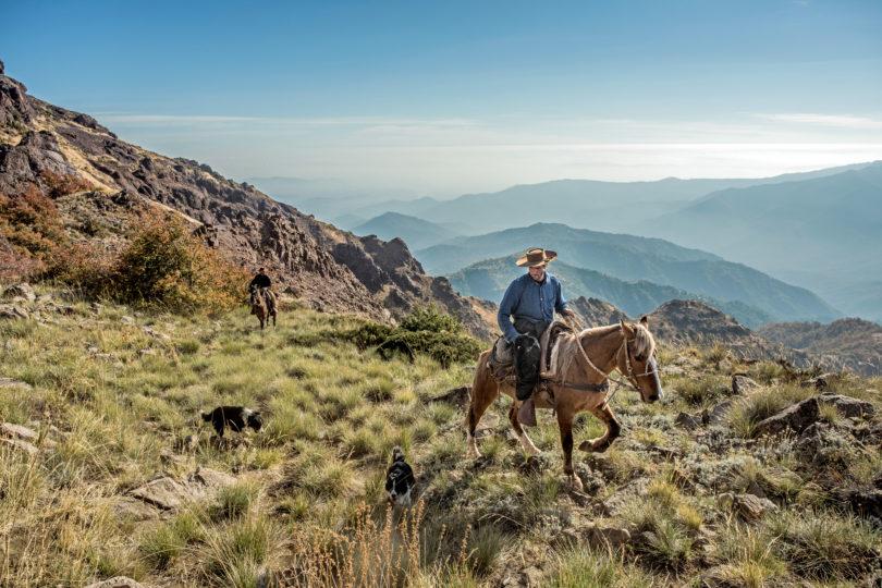 """""""La Cordillera de los Andes, al sur de América"""": el nuevo libro que relata la influencia de ésta en la formación del país y del carácter chileno"""