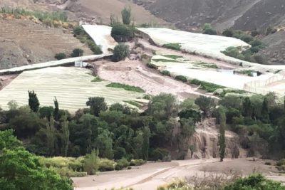 Alerta amarilla en Atacama tras intensas lluvias: un fallecido y al menos 5 desaparecidos