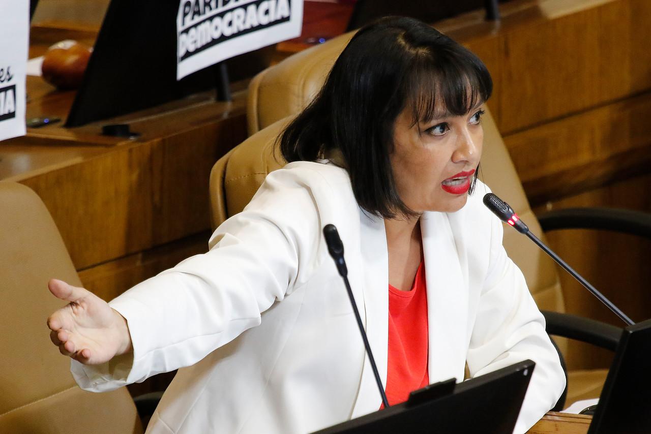El proyecto de Natalia Castillo para que el Fisco se quede con parte de las herencias