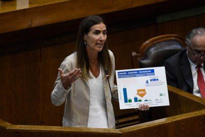 Ministra Schmidt pide perdón por las zonas de sacrificio en interpelación