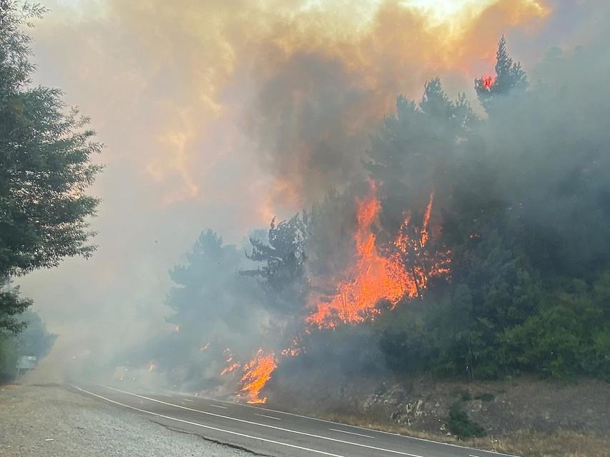 Incendio forestal en Chiguayante ya ha consumido 450 hectáreas