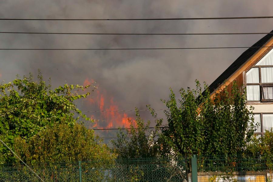 """""""Declaran Alerta Roja en Chiguayante por incendio forestal que amenaza viviendas"""""""