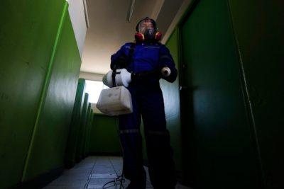 Descubren un ratón en el área de alimentos del Hospital San José de Maipo