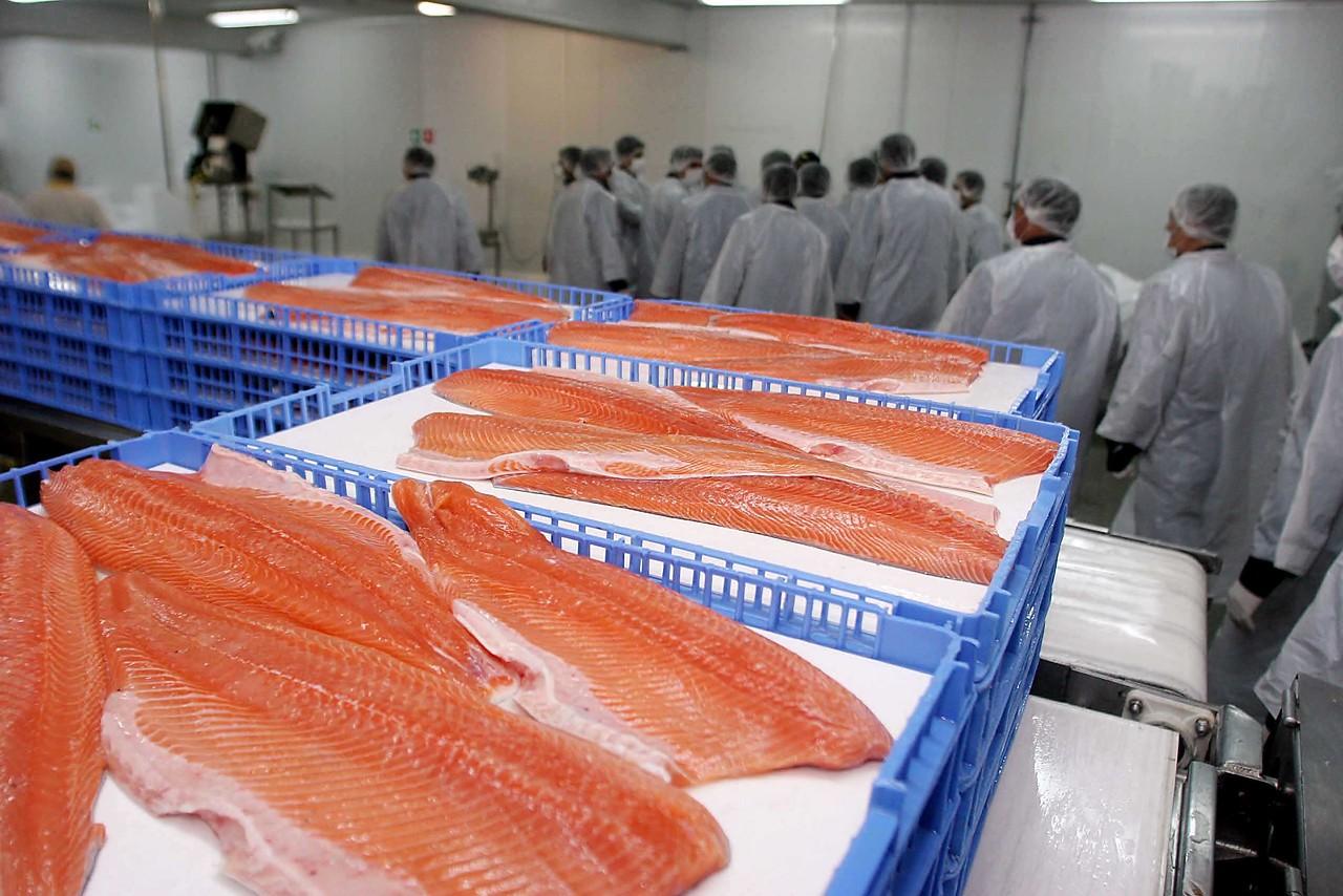 """""""Seremi de Salud RM ordenó retiro de marca de salmón ahumado del mercado"""""""