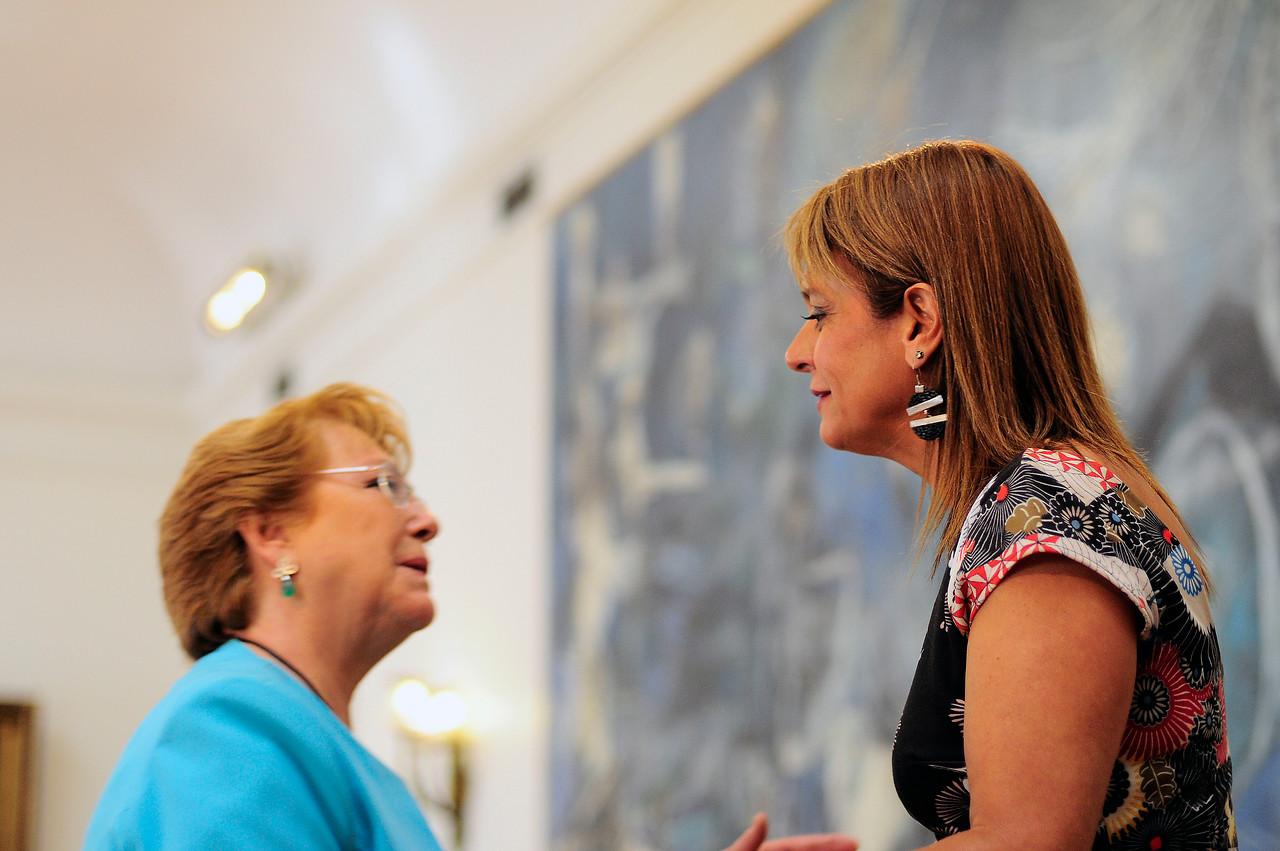 El camino de la UDI para mejorar proyecto constitucional de Bachelet