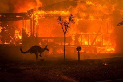 """Experta en desastres sobre incendios forestales: """"La sequía aumenta su magnitud"""""""