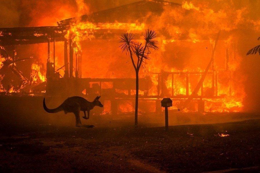 """""""Experta en desastres sobre incendios forestales: """"La sequía aumenta su magnitud"""