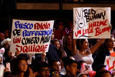 Festival de Viña: restringirán pancartas que ingresen a la Quinta Vergara