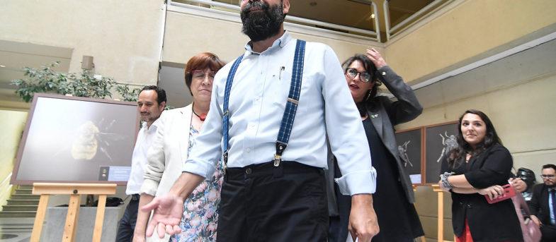 Abogada de la Corte Internacional de Justicia desmiente a Gutiérrez por supuesto recurso contra Piñera en La Haya