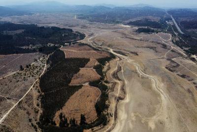Traslado de animales y reforestación: las medidas del Gobierno para apoyar a los ganaderos afectados por la sequía