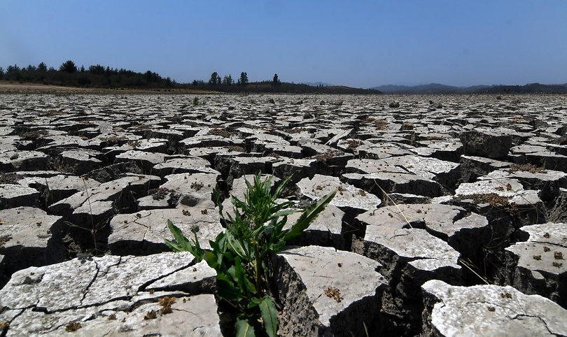 Gobierno decreta emergencia agrícola para ocho comunas de la Región de Ñuble