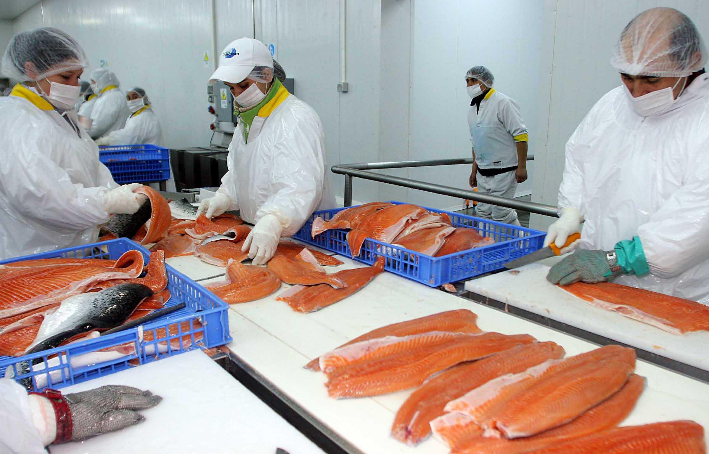 Otro efecto del coronavirus en exportaciones: China suspende envíos de salmón
