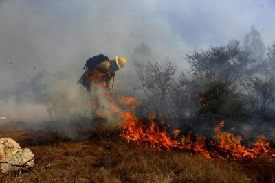 Se mantiene la Alerta Roja para Quilpué por un incendio forestal