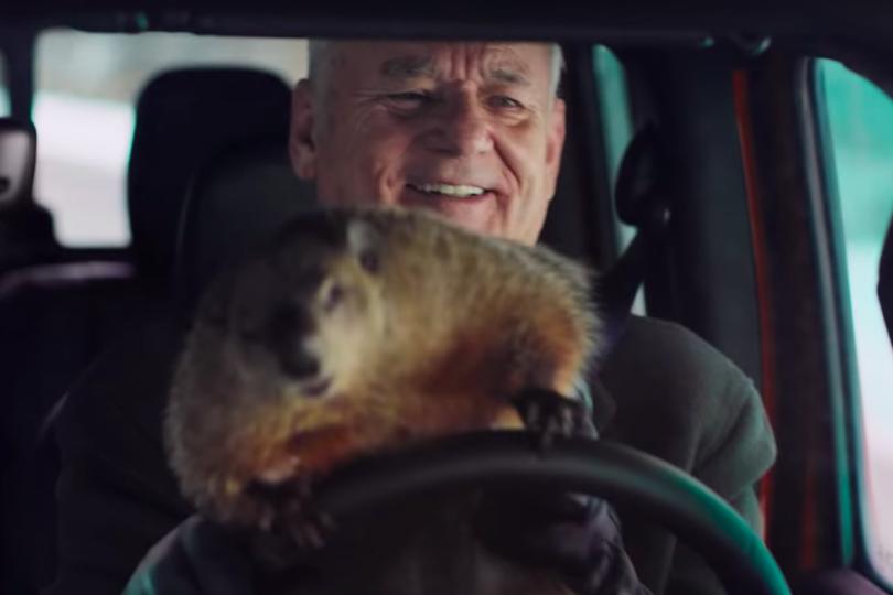 """Super Bowl: Bill Murray celebra el """"Día de la Marmota"""""""